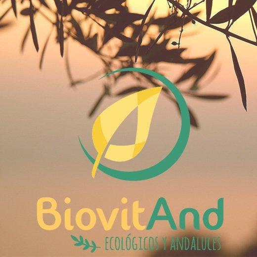 Diseño Logotipo BiovitAnd