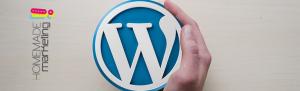 pasos para actualizar WordPress